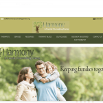 Make Your Mark Web Design Harmony Family Counseling Center website picture